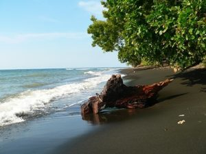 Black volcanic sand beach in North-Bali