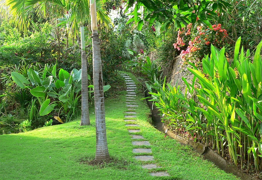 Tropical garden of Villa Bali Breeze